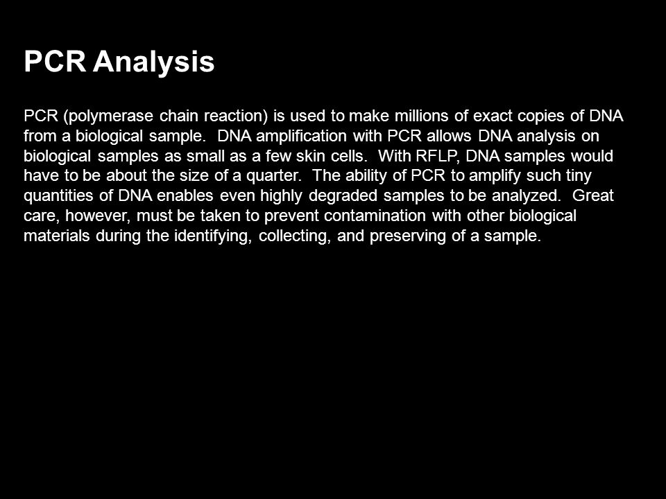 PCR Analysis