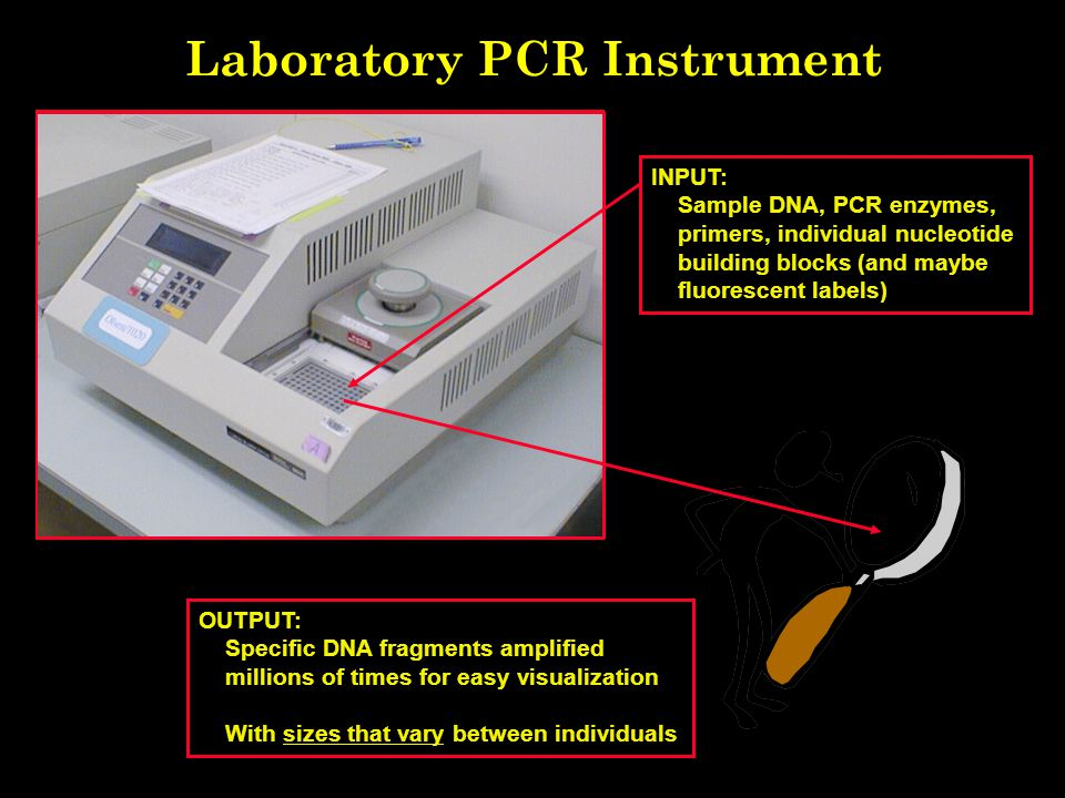 Laboratory PCR Instrument