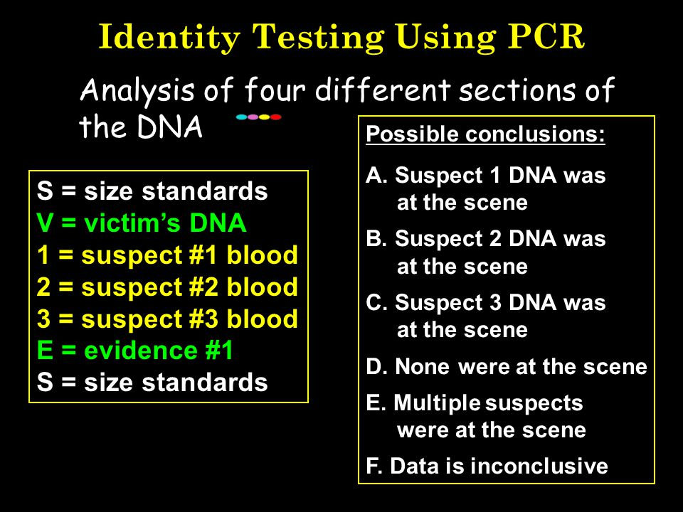Identity Testing Using PCR