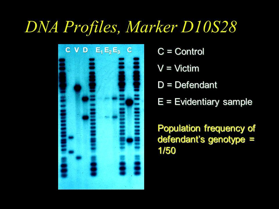 DNA Profiles, Marker D10S28 C = Control V = Victim D = Defendant