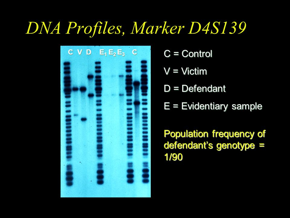 DNA Profiles, Marker D4S139 C = Control V = Victim D = Defendant