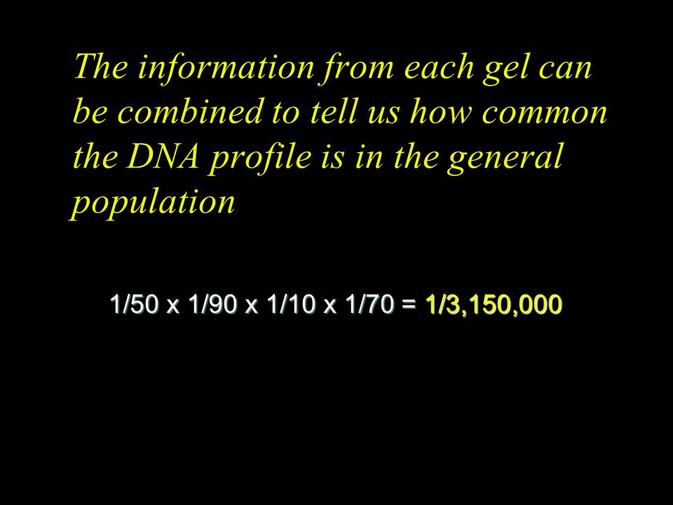 The information from each gel can be combined to tell us how common the DNA profile is in the general population