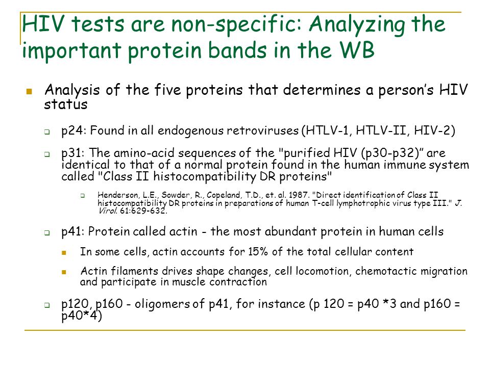 HIV tests are non-specific: Analyzing the important protein bands in the WB