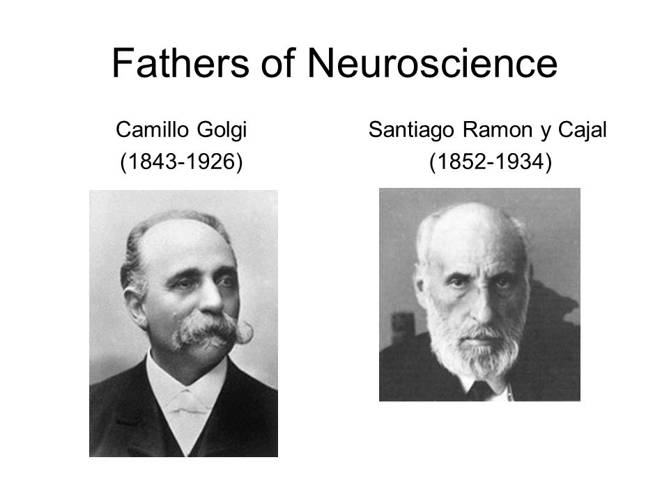Fathers of Neuroscience