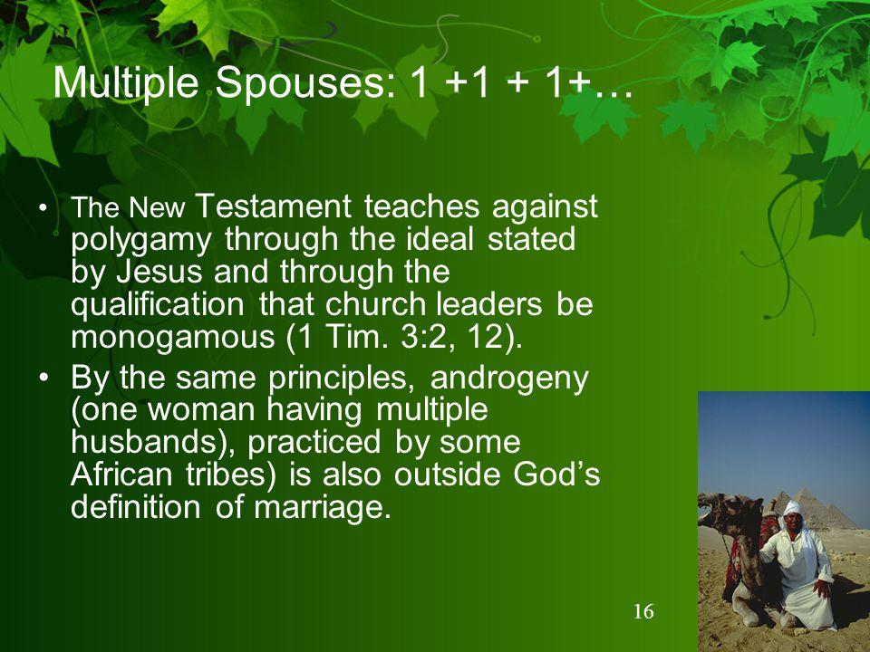 Multiple Spouses: 1 +1 + 1+…