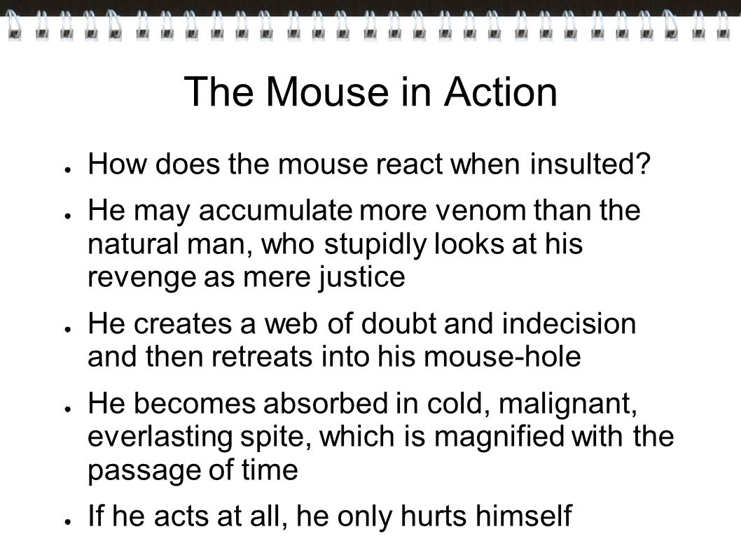 The Mouse in Action How does the mouse react when insulted