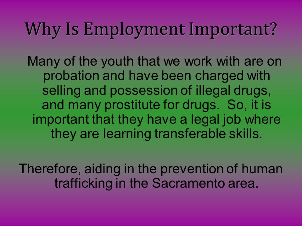 Why Is Employment Important