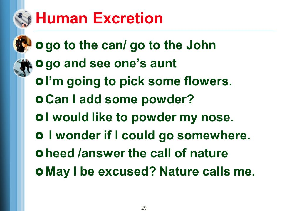 Human Excretion go to the can/ go to the John go and see one's aunt