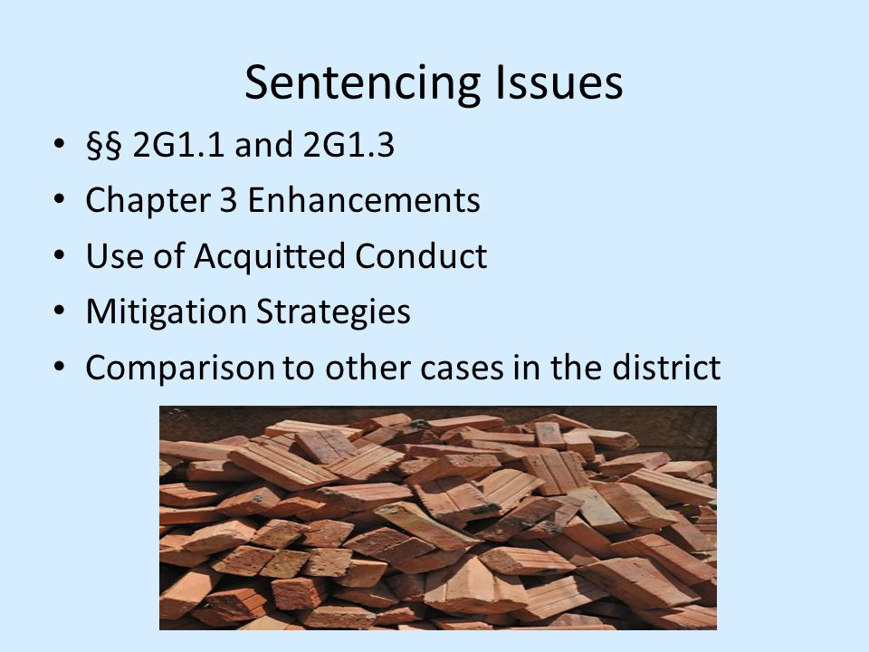 Sentencing Issues §§ 2G1.1 and 2G1.3 Chapter 3 Enhancements