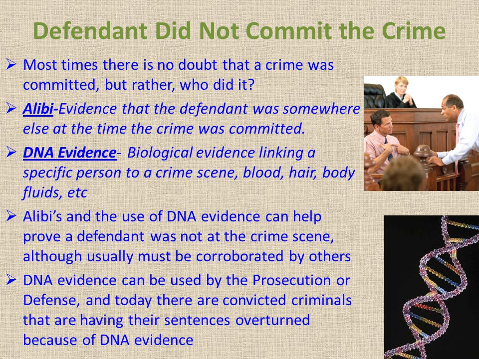 Defendant Did Not Commit the Crime