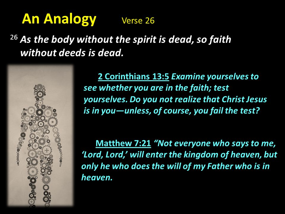 An Analogy Verse 26 26 As the body without the spirit is dead, so faith. without deeds is dead.