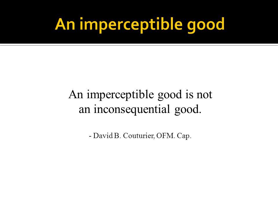 An imperceptible good An imperceptible good is not