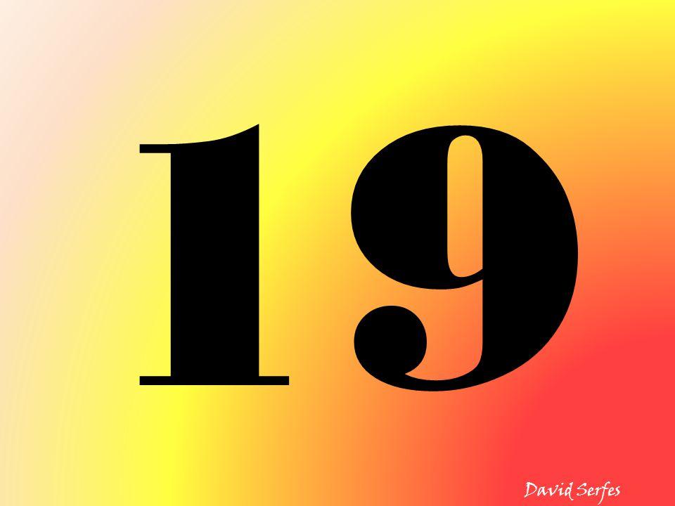 19 David Serfes