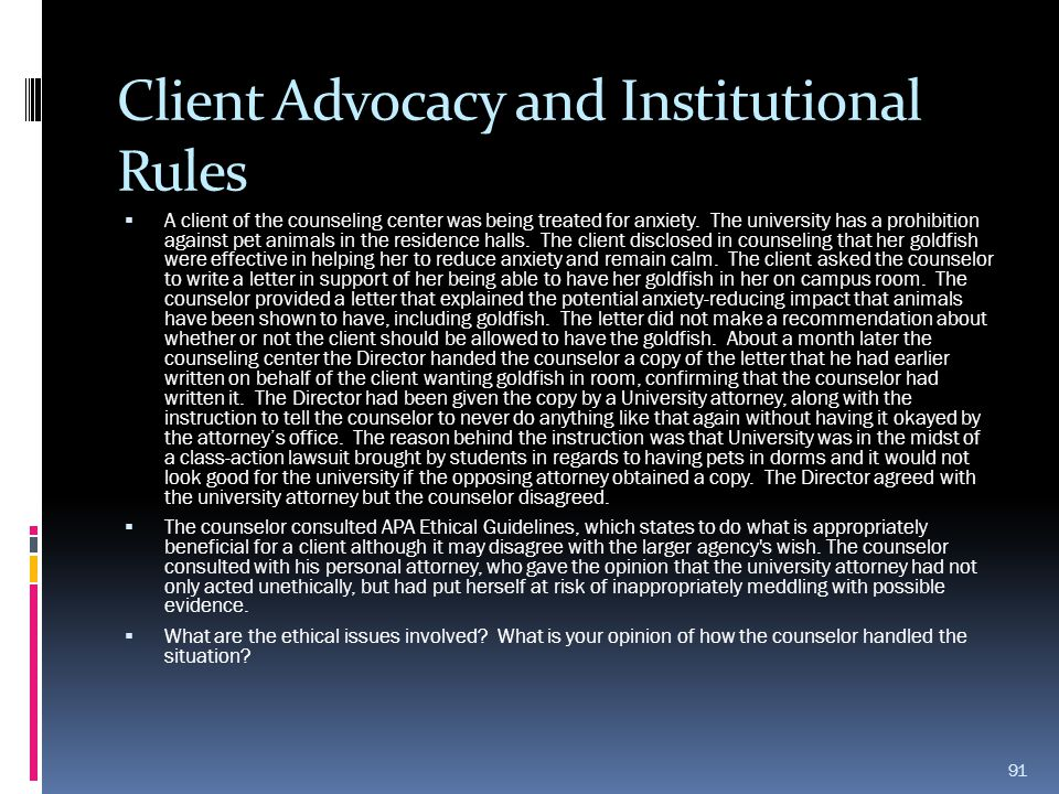 Client Advocacy and Institutional Rules
