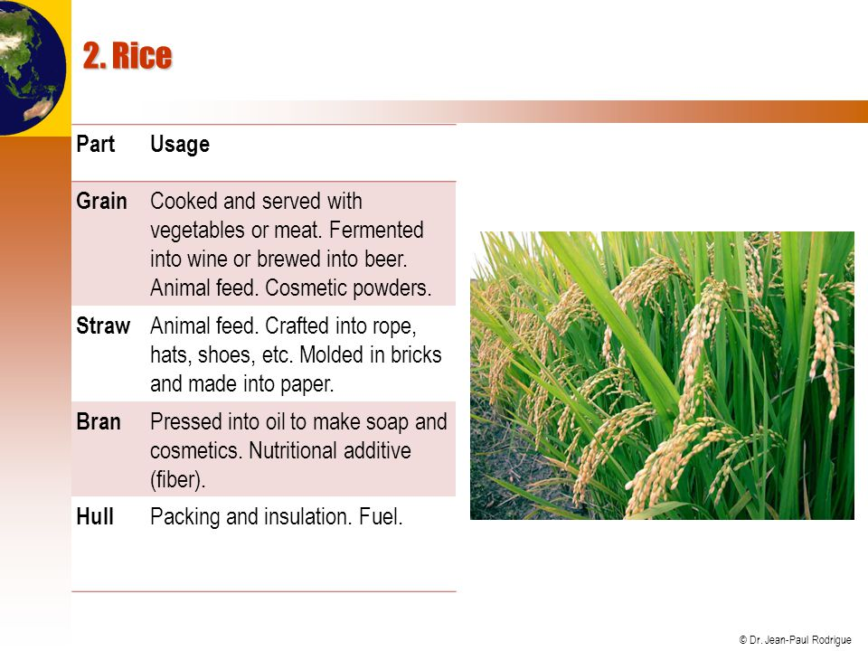 2. Rice Part. Usage. Grain. Cooked and served with vegetables or meat. Fermented into wine or brewed into beer. Animal feed. Cosmetic powders.