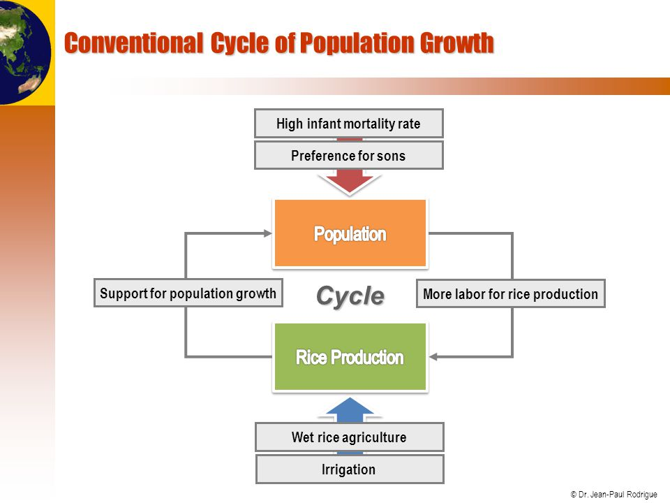 Conventional Cycle of Population Growth
