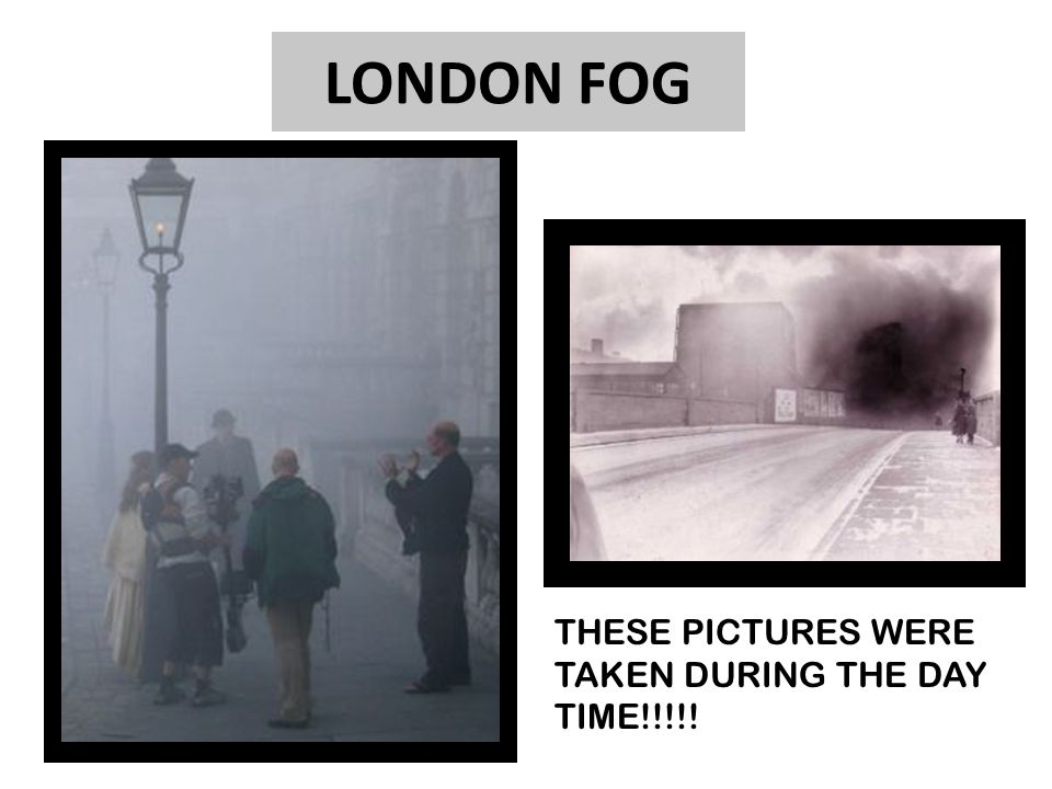 LONDON FOG D THESE PICTURES WERE TAKEN DURING THE DAY TIME!!!!!