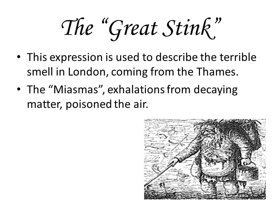 The Great Stink This expression is used to describe the terrible smell in London, coming from the Thames.