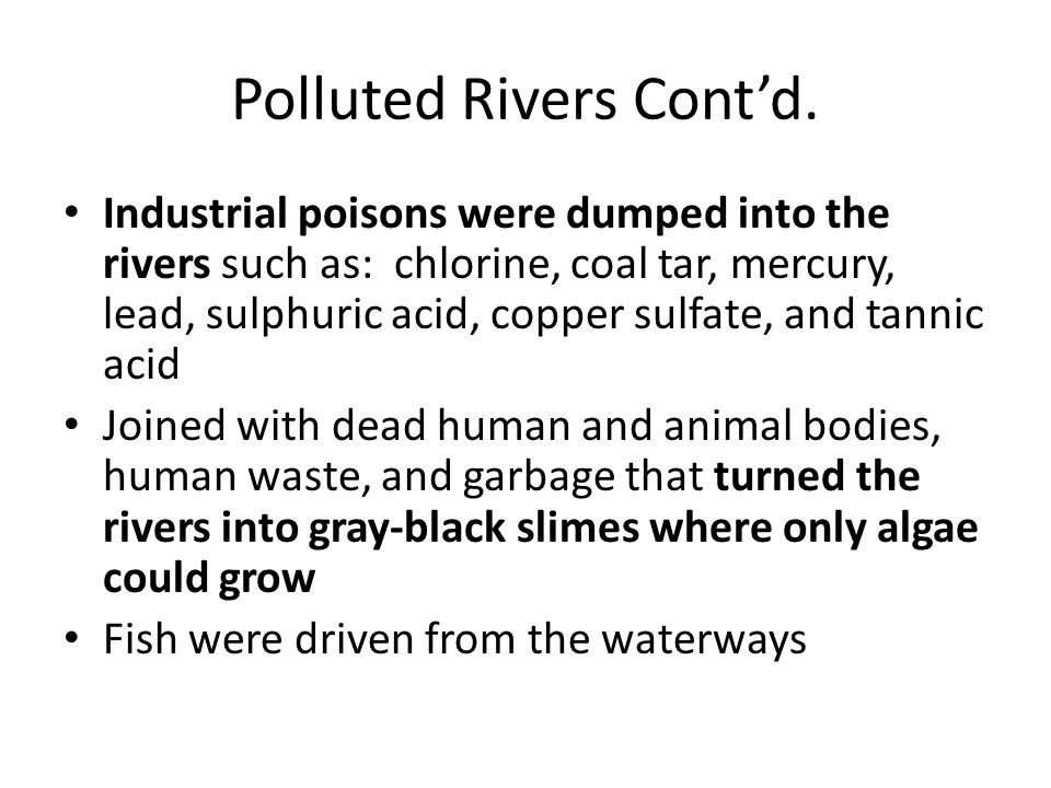 Polluted Rivers Cont'd.