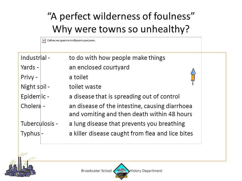 A perfect wilderness of foulness Why were towns so unhealthy