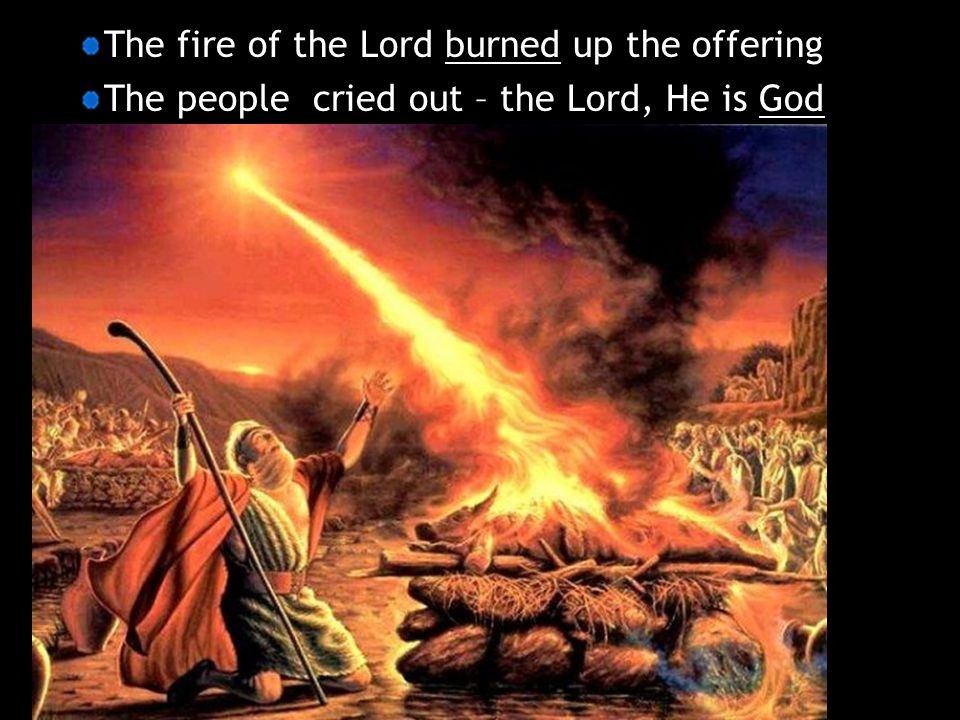 The fire of the Lord burned up the offering