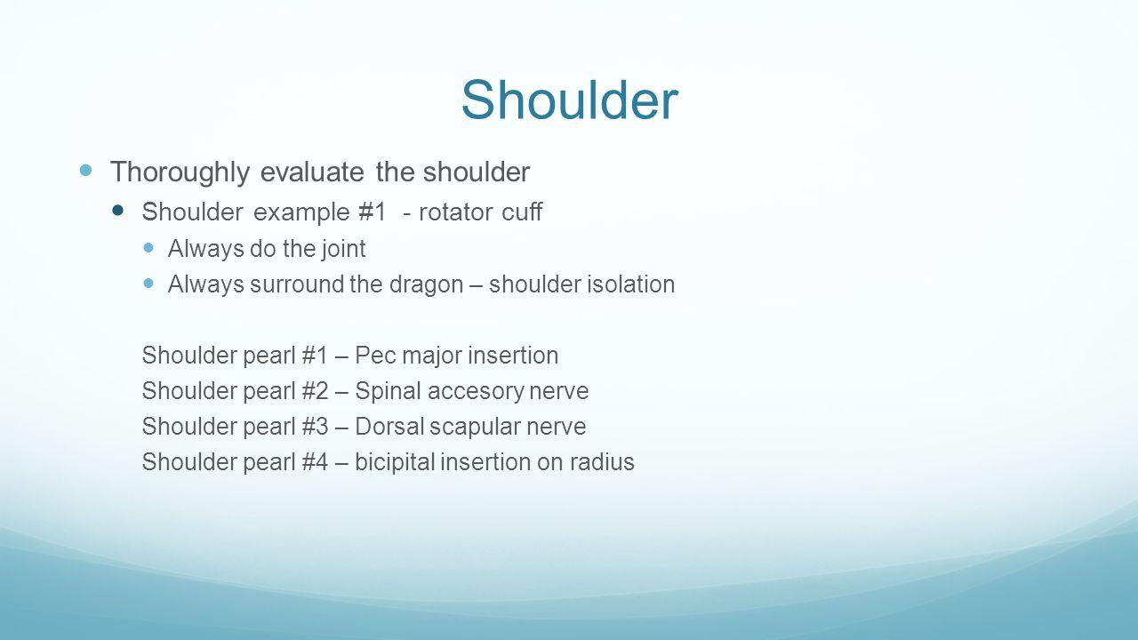 Shoulder Thoroughly evaluate the shoulder