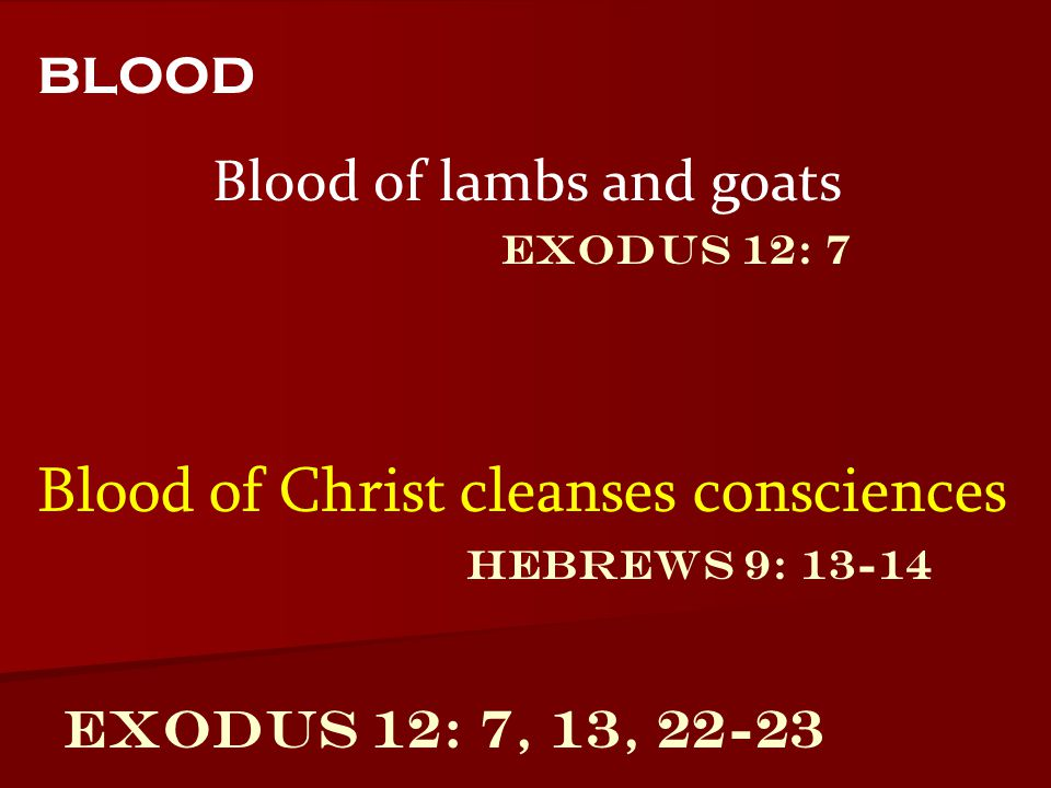 Blood of lambs and goats