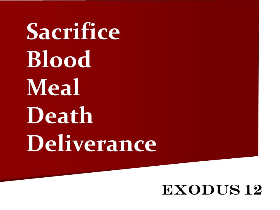 Sacrifice Blood Meal Death Deliverance Exodus 12