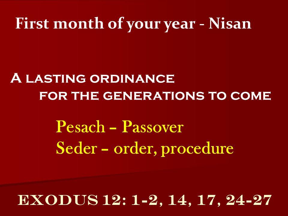 Seder – order, procedure