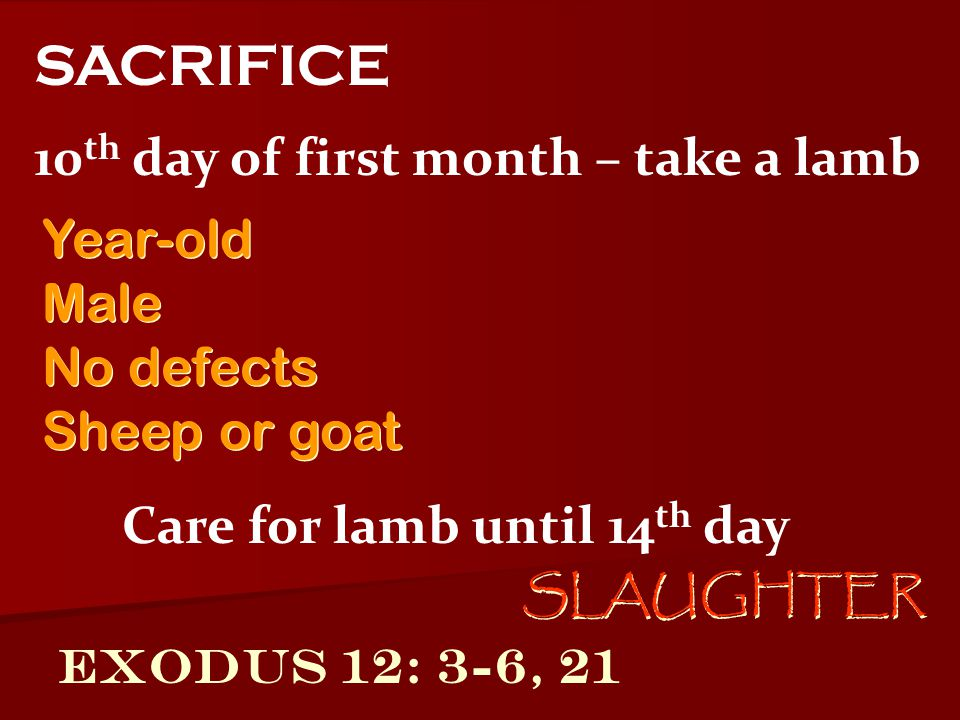 SACRIFICE 10th day of first month – take a lamb Year-old Male