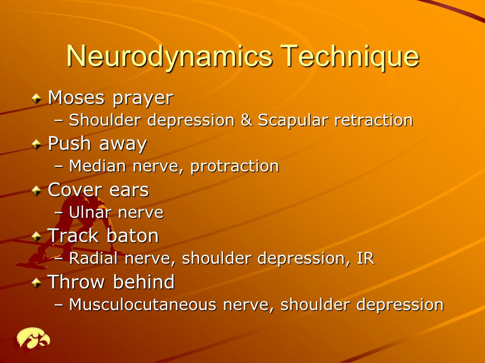 Neurodynamics Technique