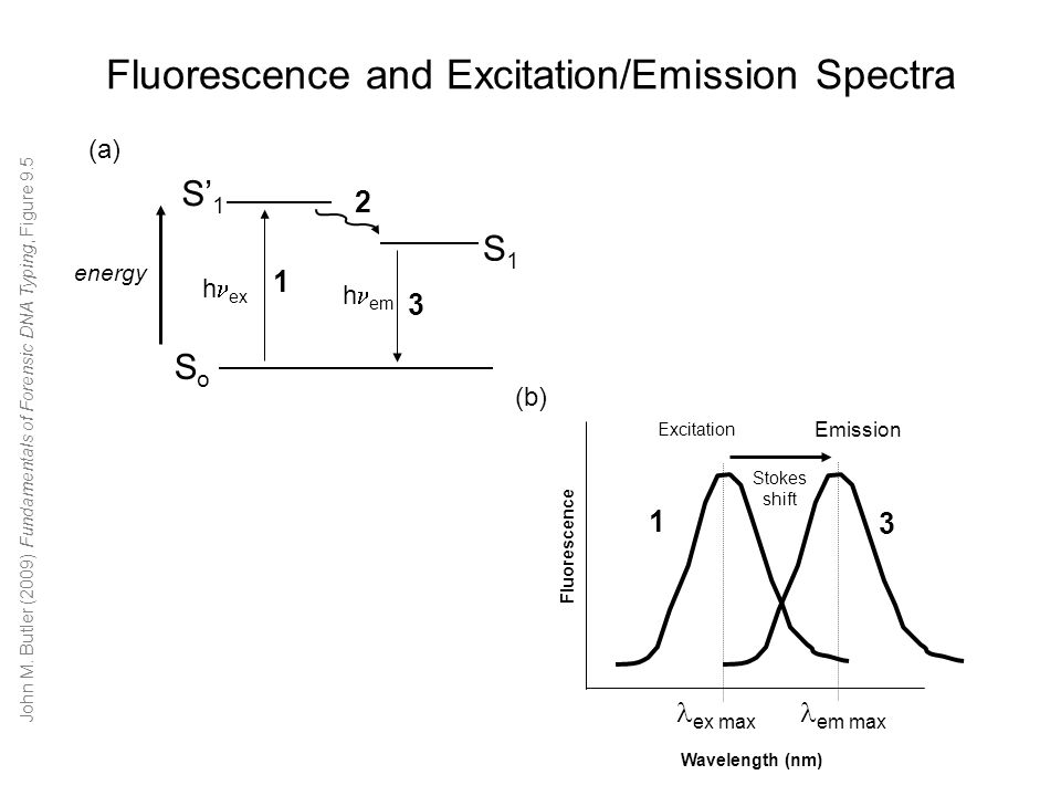 Fluorescence and Excitation/Emission Spectra