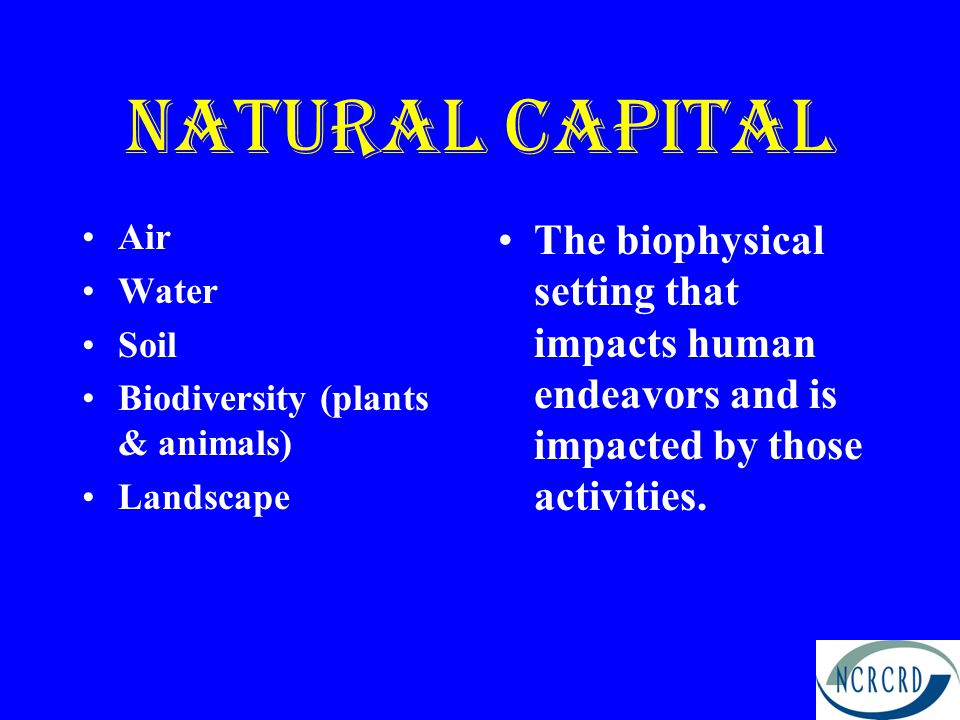 Natural capital Air. Water. Soil. Biodiversity (plants & animals) Landscape.