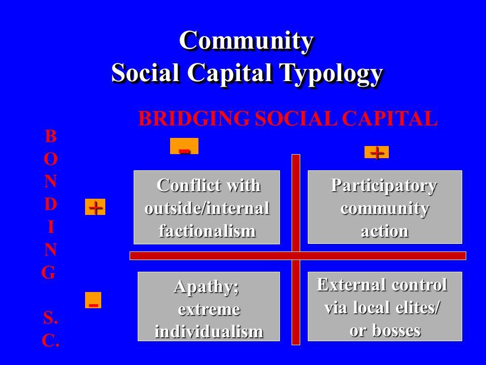 - - Community Social Capital Typology + + BRIDGING SOCIAL CAPITAL B O