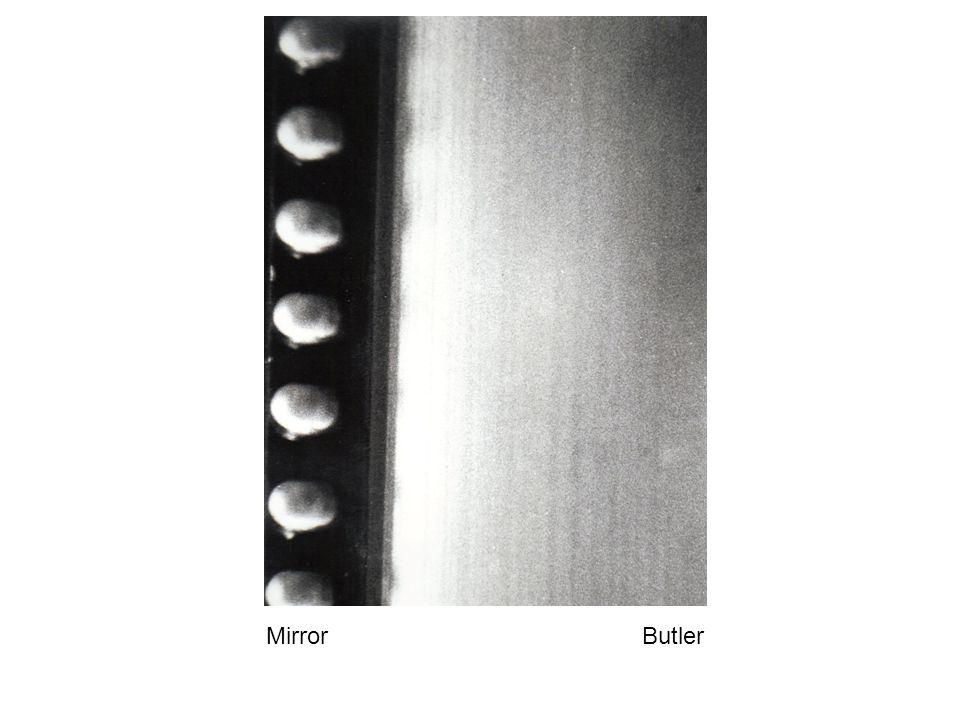 Mirror Butler