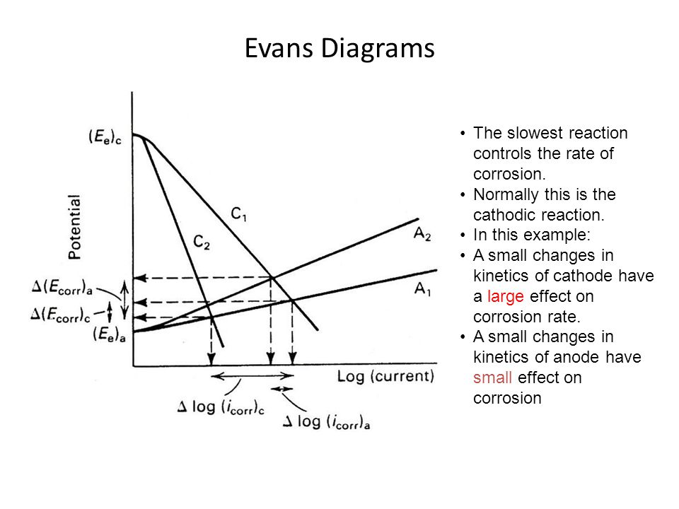 Evans Diagrams The slowest reaction controls the rate of corrosion.