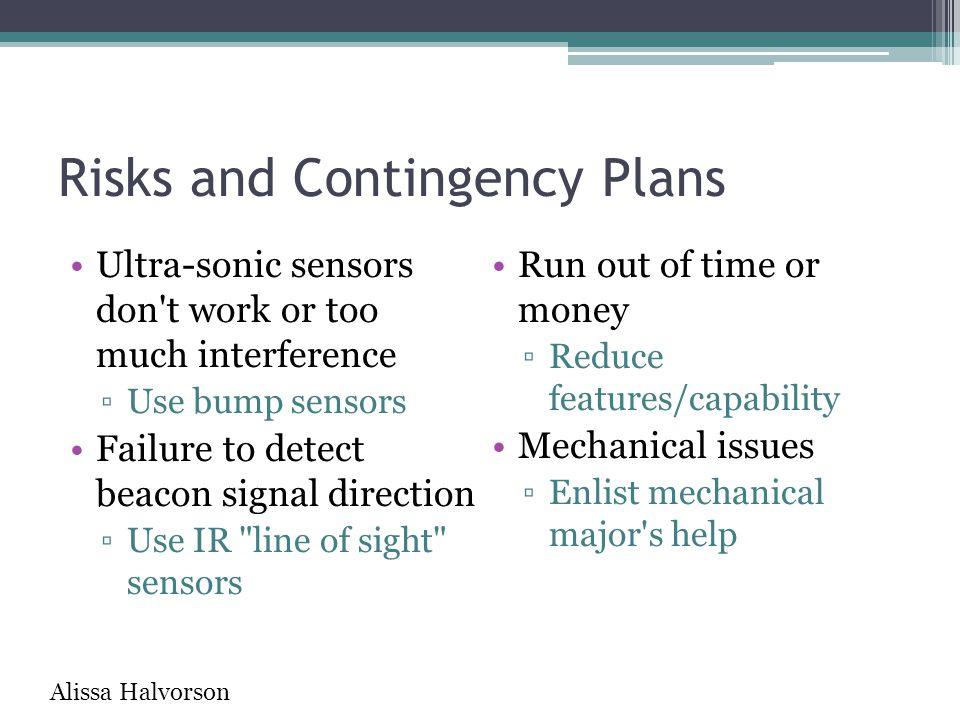 Risks and Contingency Plans