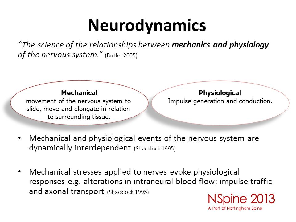 Neurodynamics The science of the relationships between mechanics and physiology of the nervous system. (Butler 2005)
