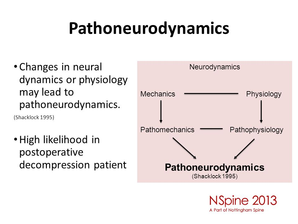 Pathoneurodynamics Changes in neural dynamics or physiology may lead to pathoneurodynamics. (Shacklock 1995)