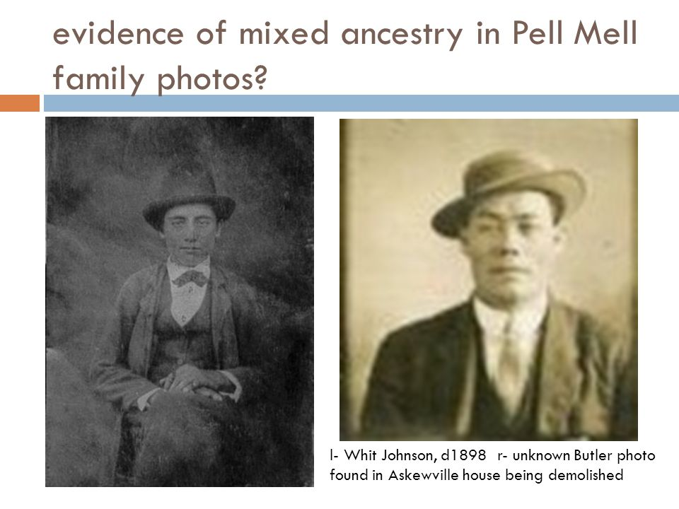 evidence of mixed ancestry in Pell Mell family photos