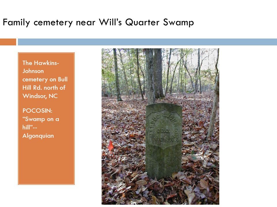 Family cemetery near Will's Quarter Swamp