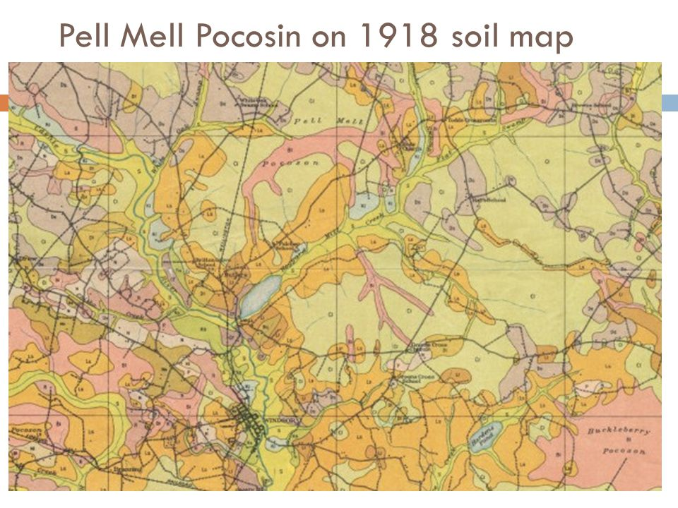 Pell Mell Pocosin on 1918 soil map