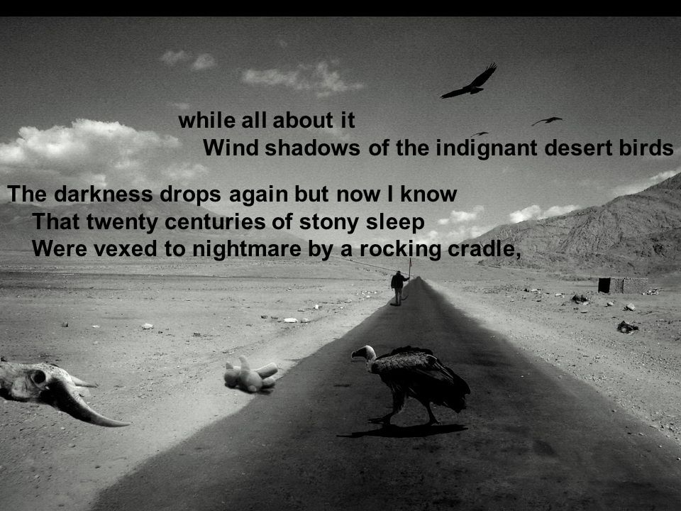 while all about it Wind shadows of the indignant desert birds