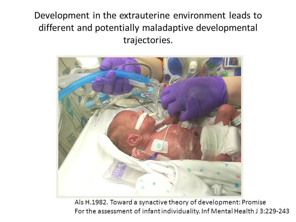 Development in the extrauterine environment leads to different and potentially maladaptive developmental trajectories.
