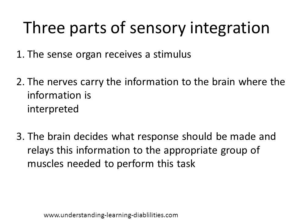 Three parts of sensory integration