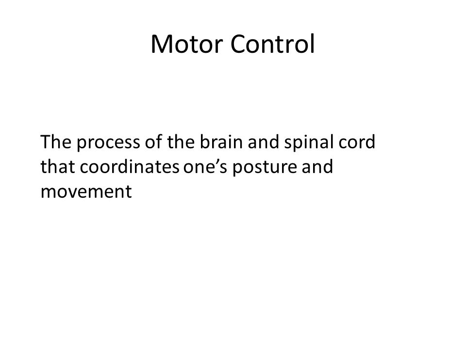 Motor Control The process of the brain and spinal cord that coordinates one's posture and movement.