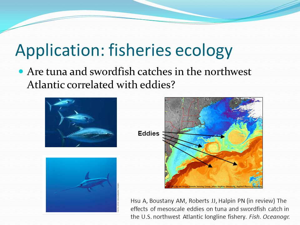 Application: fisheries ecology