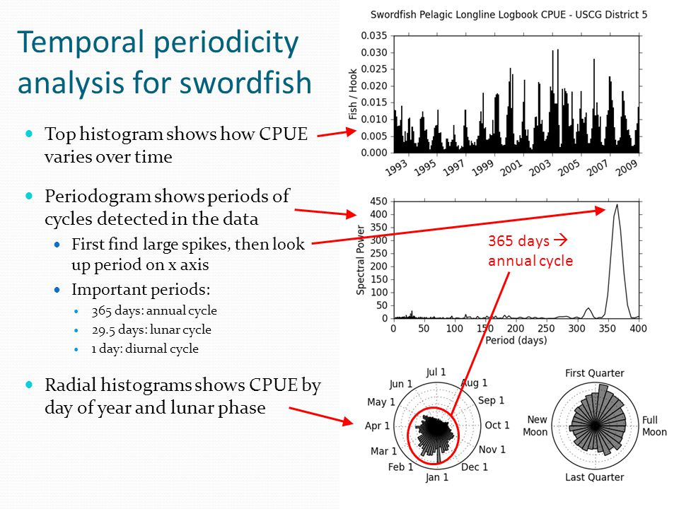 Temporal periodicity analysis for swordfish
