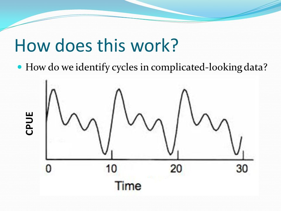 How does this work How do we identify cycles in complicated-looking data CPUE