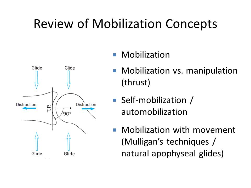 Review of Mobilization Concepts